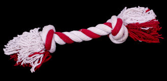 Hundespielzeug, Seil mit Knoten Lizenzfreie Stockbilder
