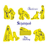 Hundesport-Vektorillustration Stockbilder