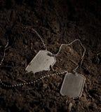 hundetiketter Royaltyfria Bilder