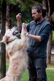 Hundetraining, hallo-Fünf Befehl, Gehorsam lizenzfreies stockfoto