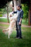 Hundetraining, Sprungs-Befehl, Gehorsam lizenzfreies stockfoto