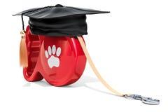Hundetrainingskonzept, Wiedergabe 3D Lizenzfreies Stockbild