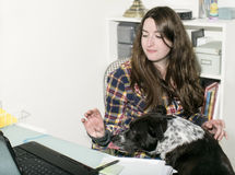 Hundeunterbrechungen bearbeiten zu Hause Frau Stockbilder