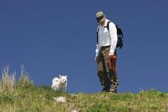 Hundewanderer in der Leine-freien Zone Stockfotografie