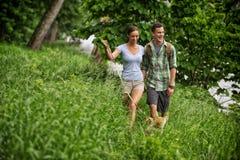 Hundeweg im Gras Lizenzfreies Stockbild