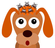 Hundfästingar royaltyfri illustrationer
