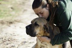 Hundfila brasileiro Lizenzfreie Stockbilder
