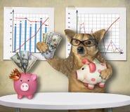 Hundfinansiär med spargrisar arkivbilder