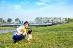 hundflickor Arkivfoton