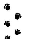 Hundfotspår Royaltyfria Bilder