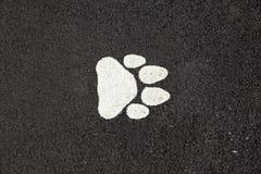 Hundfottryck Arkivfoto