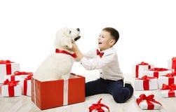 Hundgåva och barn, lycklig ungepojke med den vita djurhusdjurgåvan arkivbild