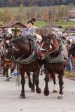 Hundham, Германия, Бавария 04 11 2017: Езда Leonhardi в баварском Hundham Стоковое Изображение RF