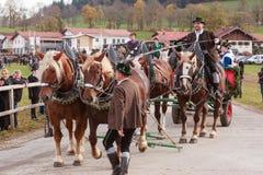Hundham Tyskland, Bayern 04 11 2017: Leonhardi ritt i den bayerska Hundhamen Arkivbilder