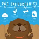 Hundinfographics Royaltyfri Foto