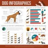 Hundinfographicsuppsättning Arkivbild