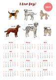 Hundkalender 2019 Hundkapplöpningen av olika avel skissar royaltyfri illustrationer