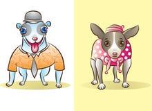 Hundkapplöpning Royaltyfria Bilder