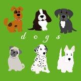Hundkapplöpning av olika avel vektor illustrationer