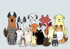 Hundkapplöpning- och kattgrupp Arkivbild