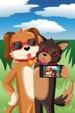 Hundkapplöpning som tar en selfie Arkivbilder