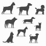 Hundkapplöpningsymbolsuppsättning av olika avel stock illustrationer
