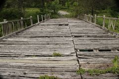 Hundlapp USA - bron fördärvar in Royaltyfri Bild