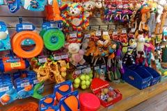 Hundleksaker i älsklings- shoppar skärm arkivbilder