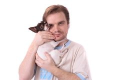 hundman Arkivfoton