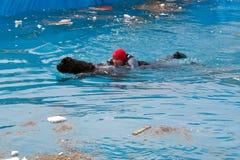 hundräddningsaktion Royaltyfria Bilder