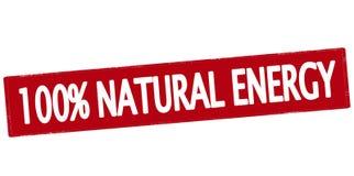 Hundra procent naturlig energi Royaltyfri Foto