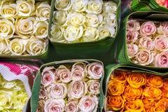 Hundratals mångfärgade rosor som slås in i papper ny bakgrundsblomma Affär blommaför växa och produktion Grossist och beträffande Arkivbilder