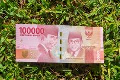 Hundratusen rupiah pappers- pengar på grönt gräs Fotografering för Bildbyråer
