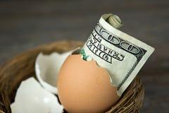 Hundred dollar bill in brown egg shell Stock Images
