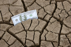 Hundred dollar in cracked ground Stock Images