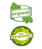 Hundred Percent Vector Organic Label Royalty Free Stock Photos