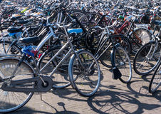 Hundreds of Bicycles Royalty Free Stock Images