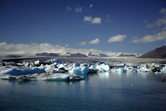 Hundreds of icebergs. Jokulsarlon lagoon Iceland Royalty Free Stock Photography