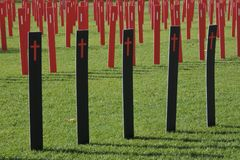 Car crashes rate across South Australia. Hundreds of roadside markers in Victoria Square to represent all the people who lost their lives or were seriously royalty free stock photos