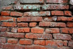Hundreds of years old red brick walls are still intact and durable stock photography