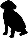 hundsilhouette Royaltyfri Bild