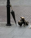 hundskulptur torun Arkivbild
