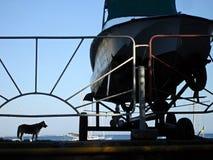 Hundstaket och ett fartyg nära Arkivbild