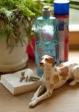 Hundstatyett Arkivfoton