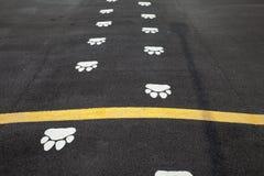Hundtecken på vägen Arkivfoto