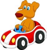 Hundtecknad film som kör bilen Arkivbild