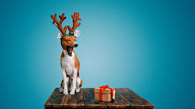 Hunduppklädd som julhjortar med gåva Fotografering för Bildbyråer