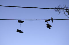 Hung shoes. Royalty Free Stock Images