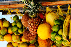 Hung tropical fruits Royalty Free Stock Photo