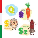Hungarian alphabet. Carrot, Hedgehog, Salami. Vector letters and characters. Hungarian alphabet. Carrot, Hedgehog, Salami Vector letters and characters Stock Illustration